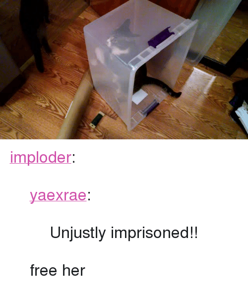 """Free Her: <p><a href=""""http://blog.implodecosplay.com/post/166346046506/yaexrae-unjustly-imprisoned-free-her"""" class=""""tumblr_blog"""">imploder</a>:</p> <blockquote> <p><a href=""""http://yaexrae.tumblr.com/post/166345883482/unjustly-imprisoned"""" class=""""tumblr_blog"""">yaexrae</a>:</p> <blockquote><p>Unjustly imprisoned!!</p></blockquote> <p>free her</p> </blockquote>"""