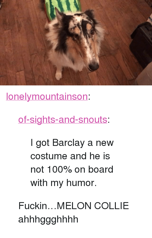 "Anaconda, Tumblr, and Blog: <p><a href=""http://lonelymountainson.tumblr.com/post/166522212446/of-sights-and-snouts-i-got-barclay-a-new"" class=""tumblr_blog"">lonelymountainson</a>:</p><blockquote> <p><a href=""https://of-sights-and-snouts.tumblr.com/post/166451500136/i-got-barclay-a-new-costume-and-he-is-not-100-on"" class=""tumblr_blog"">of-sights-and-snouts</a>:</p>  <blockquote><p>I got Barclay a new costume and he is not 100% on board with my humor.</p></blockquote>  <p>Fuckin…MELON COLLIE ahhhggghhhh</p> </blockquote>"