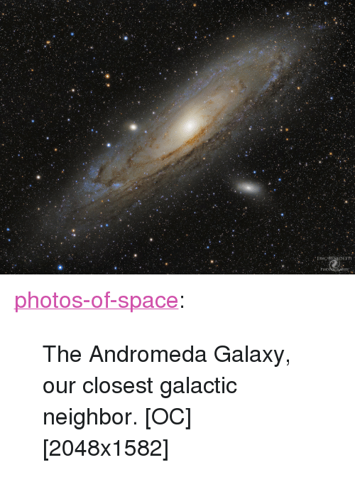 "andromeda: <p><a href=""https://photos-of-space.tumblr.com/post/162768462697/the-andromeda-galaxy-our-closest-galactic"" class=""tumblr_blog"">photos-of-space</a>:</p>  <blockquote><p>The Andromeda Galaxy, our closest galactic neighbor. [OC][2048x1582]</p></blockquote>"