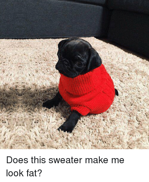 Make Me Look Fat: <p>Does this sweater make me look fat?</p>