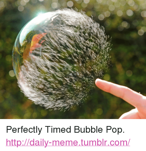"""Bubble Pop: <p>Perfectly Timed Bubble Pop.<br/><a href=""""http://daily-meme.tumblr.com""""><span style=""""color: #0000cd;""""><a href=""""http://daily-meme.tumblr.com/"""">http://daily-meme.tumblr.com/</a></span></a></p>"""