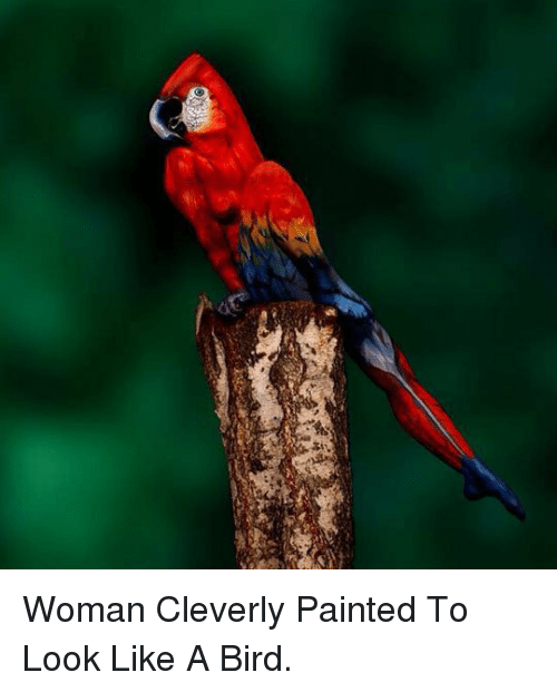 like a bird: <p>Woman Cleverly Painted To Look Like A Bird.</p>