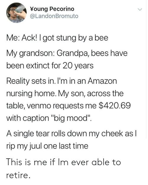 "Venmo: ¥oung Pecorino  @LandonBromuto  Me: Ack! I got stung by a bee  My grandson: Grandpa, bees have  been extinct for 20 years  Reality sets in. I'm in an Amazon  nursing home. My son, across the  table, venmo requests me $420.69  with caption ""big mood""  A single tear rolls down my cheek as I  rip my juul one last time This is me if Im ever able to retire."