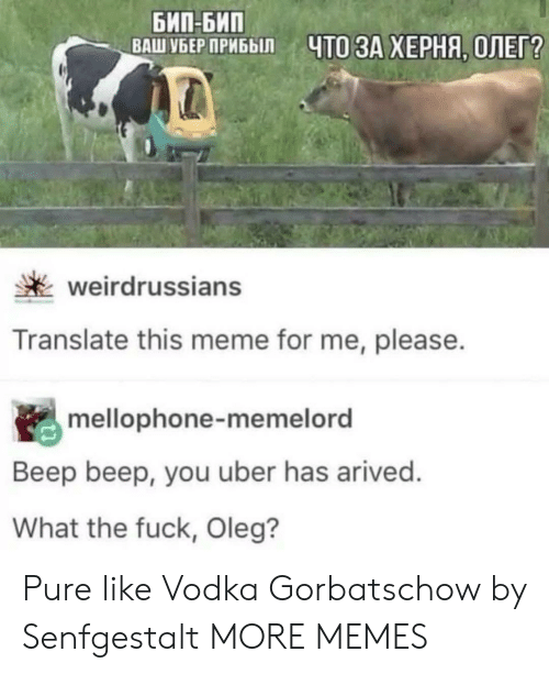 Vodka: БИП-БИП  ВАШ УБЕР ПРИБЫЛ  ЧТО ЗА ХЕРНЯ, ОЛЕГ?  weirdrussians  Translate this meme for me, please.  mellophone-memelord  Beep beep, you uber has arived.  What the fuck, Oleg? Pure like Vodka Gorbatschow by Senfgestalt MORE MEMES