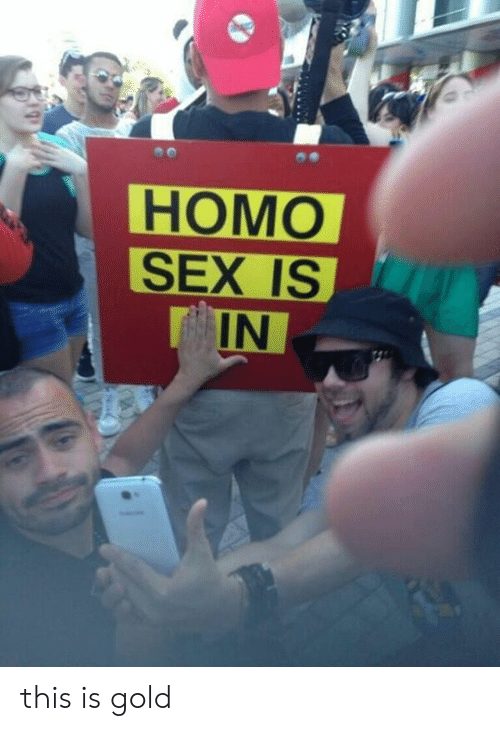 Memes, Sex, and 🤖: НОМО  SEX IS  IN this is gold