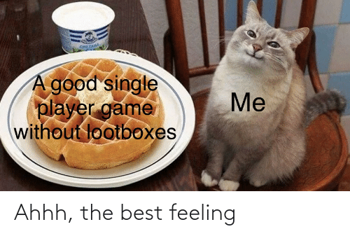 Ahhh: снETAM  A good single  player game  without lootboxes  Me Ahhh, the best feeling