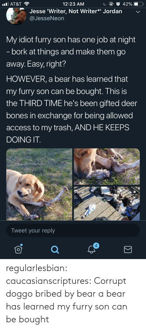 Bones: С @ О 42%-O,  12:23 AM  l AT&T  Jesse 'Writer, Not Writer*i Jordan  @JesseNeon  My idiot furry son has one job at night  - bork at things and make them go  away. Easy, right?  HOWEVER, a bear has learned that  my furry son can be bought. This is  the THIRD TIME he's been gifted deer  bones in exchange for being allowed  access to my trash, AND HE KEEPS  DOING IT  Tweet your reply  4 regularlesbian:  caucasianscriptures: Corrupt doggo bribed by bear a bear has learned my furry son can be bought