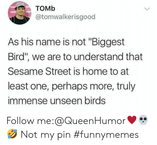 "pin: Томь  @tomwalkerisgood  As his name is not ""Biggest  Bird"", we are to understand that  Sesame Street is home to at  least one, perhaps more, truly  immense unseen birds Follow me:@QueenHumor♥️💀🤣 Not my pin #funnymemes"