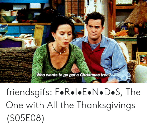 Christmas, Friends, and Target: మ  Who wants to go get a Christmas tree? friendsgifs:  F•R•I•E•N•D•S, The One with All the Thanksgivings (S05E08)
