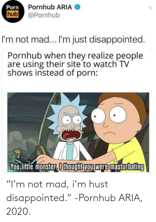 """Mad: """"I'm not mad, i'm hust disappointed."""" -Pornhub ARIA, 2020."""