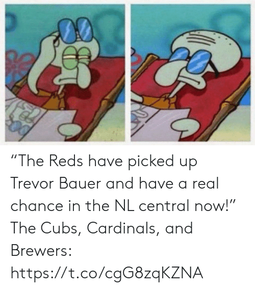 "Cubs: ""The Reds have picked up Trevor Bauer and have a real chance in the NL central now!""  The Cubs, Cardinals, and Brewers: https://t.co/cgG8zqKZNA"