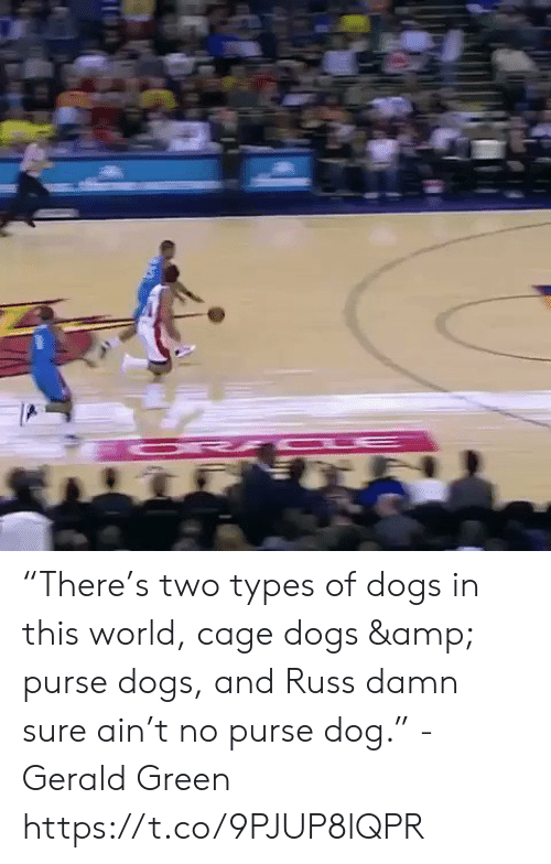 """cage: """"There's two types of dogs in this world, cage dogs & purse dogs, and Russ damn sure ain't no purse dog."""" - Gerald Green  https://t.co/9PJUP8lQPR"""