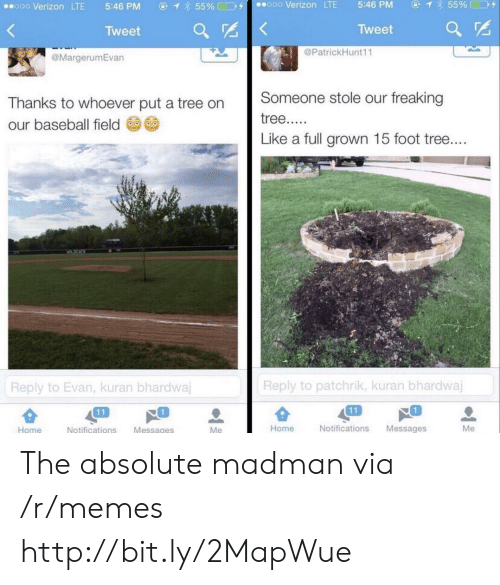 Madman: ④  855% □D+  ooo Verizon LTE  5:46 PM  ⓖ  855%□コタ  ..ooo Verizon LTE  5:46 PM  Tweet  Tweet ar  @PatrickHunt11  @MargerumEvan  Thanks to whoever put a tree on Someone stole our freaking  our baseball field  Like a full grown 15 foot tree  Reply to patchrik, kuran bhardwaj  Reply to Evan, kuran bhardwa  1  1  Home  Notifications Messages  Me  Home  Notifications Messages The absolute madman via /r/memes http://bit.ly/2MapWue