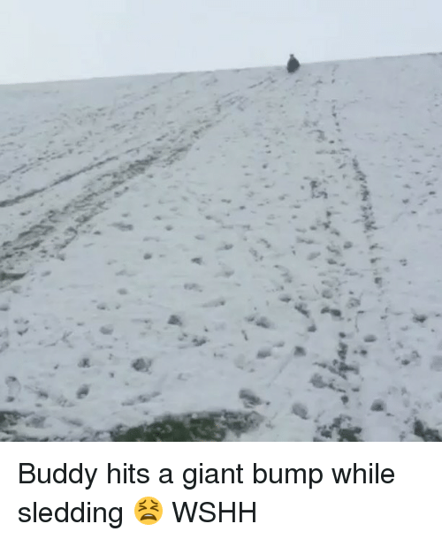 Memes, 🤖, and Ester: :./... ?ご  むこ1.5%,  p.ester Buddy hits a giant bump while sledding 😫 WSHH