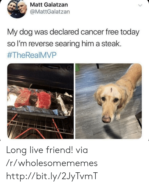 Thereal: も、Matt Galatzan  @MattGalatzan  My dog was declared cancer free today  so l'm reverse searing him a steak.  #TheReal MVP Long live friend! via /r/wholesomememes http://bit.ly/2JyTvmT