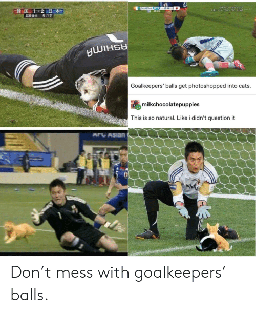 fifa: ワールトドカップ  -3-0-1  645:25  FIFA 7-JUDE  E韓国 1-2日本  5:12  1U- 1 C LIVE  Goalkeepers' balls get photoshopped into cats.  milkchocolatepuppies  This is so natural. Like i didn't question it  ARCASIAN  PREAM Don't mess with goalkeepers' balls.
