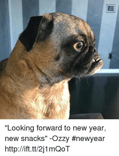 """Ozzies: 剷 """"Looking forward to new year, new snacks"""" -Ozzy #newyear http://ift.tt/2j1mQoT"""