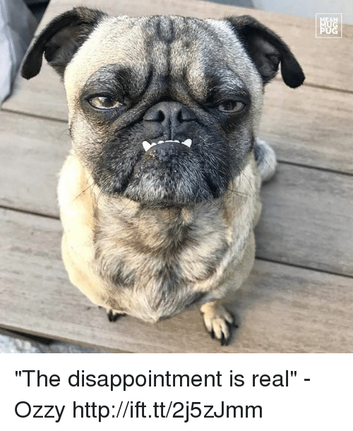 """Ozzies: 显 """"The disappointment is real"""" -Ozzy http://ift.tt/2j5zJmm"""
