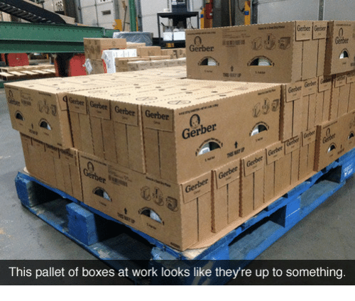 pallet: 0  Gerber  Gerber  Gerber Gerber  Gerber  Ge  This pallet of boxes at work looks like they're up to something