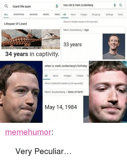 """Birthday, Life, and Mark Zuckerberg: 0, how old is mark zuckerberg  Q lizard life span  ALL SHOPPING IMAGES NEWS VIDEC Al News mages Shopping Settngs Tools  Lifespan Of Lizard  About 5,160,000 results (0.65 seconds)  Mark Zuckerberg Age  33 years  34 years in captivity  when is mark zuckerberg's birthday  es  All News magsVideos S  About 5,060,000 results (0.60 seconds)  Mark Zuckerberg Date of birth  May 14,1984 <p><a href=""""http://memehumor.net/post/173458226670/very-peculiar"""" class=""""tumblr_blog"""">memehumor</a>:</p>  <blockquote><p>Very Peculiar…</p></blockquote>"""