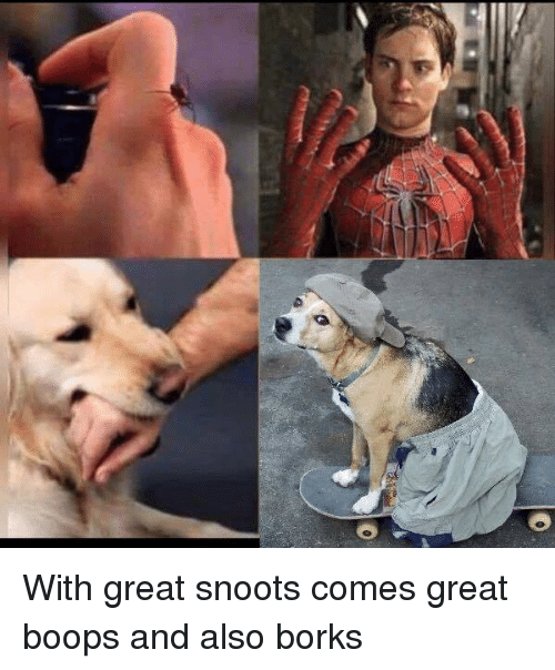 Memes, Boop, and 🤖: 0 With great snoots comes great boops and also borks