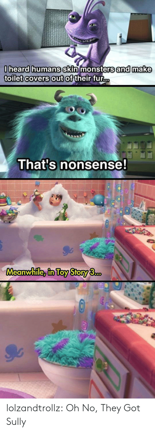 Toy Story, Tumblr, and Blog: 0heard humans skin monsters and make  toilet covers out of their fur...  That's nonsense!  Meanwhile, in Toy Story 3.co. lolzandtrollz:  Oh No, They Got Sully