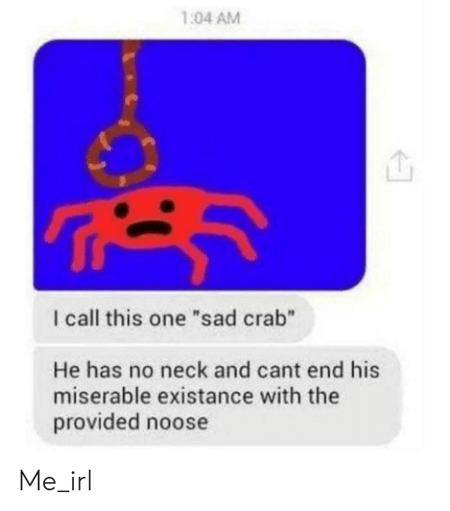 "call this: 1:04 AM  I call this one ""sad crab""  He has no neck and cant end his  miserable existance with the  provided noose Me_irl"