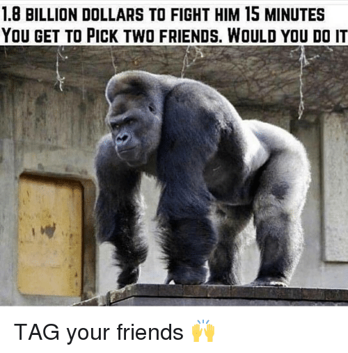 Friends, Gym, and Fight: 1.8 BILLION DOLLARS TO FIGHT HIM 15 MINUTES  YOU GET TO PICK TWO FRIENDS, WOULD YOU DO IT TAG your friends 🙌