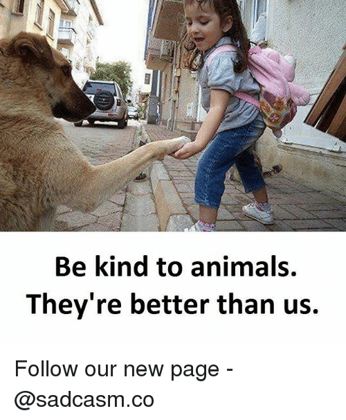 Animals, Memes, and 🤖: 1  Be kind to animals.  They're better than us. Follow our new page - @sadcasm.co
