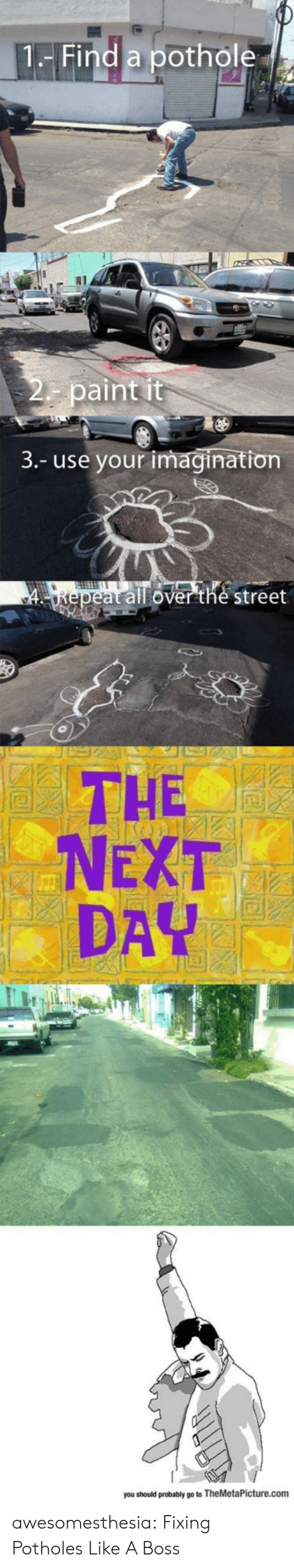 Tumblr, Blog, and Paint: 1-Find a pothole  2 paint it  3.- use your imagination  FLTE  4epeat all overethe street  THE  NEXT  DAY  you should probably go to TheMetaPicture.com awesomesthesia:  Fixing Potholes Like A Boss