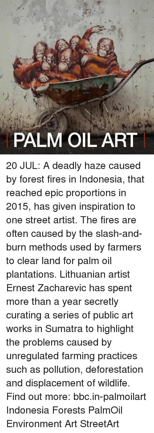 Oftenly: 1.  PALM OIL ART 20 JUL: A deadly haze caused by forest fires in Indonesia, that reached epic proportions in 2015, has given inspiration to one street artist. The fires are often caused by the slash-and-burn methods used by farmers to clear land for palm oil plantations. Lithuanian artist Ernest Zacharevic has spent more than a year secretly curating a series of public art works in Sumatra to highlight the problems caused by unregulated farming practices such as pollution, deforestation and displacement of wildlife. Find out more: bbc.in-palmoilart Indonesia Forests PalmOil Environment Art StreetArt