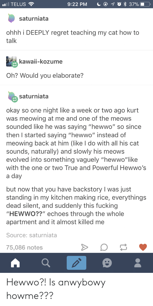 "Kurt: ),  .1 TELUS  9:22 PM  37%  saturniata  ohhh i DEEPLY regret teaching my cat how to  talk  kawaii-kozume  Oh? Would you elaborate?  saturniata  okay so one night like a week or two ago kurt  was meowing at me and one of the meows  sounded like he was saying ""hewwo"" so since  then I started saying ""hewwo"" instead of  meowing back at him (like I do with all his cat  sounds, naturally) and slowly his meows  evolved into something vaguely ""hewwo""like  with the one or two True and Powerful Hewwo's  a day  but now that you have backstory I was just  standing in my kitchen making rice, everythings  dead silent, and suddenly this fucking  HEWWO??"" echoes through the whole  apartment and it almost killed me  Source: saturniata  75,086 notes Hewwo?! Is anwybowy howme???"