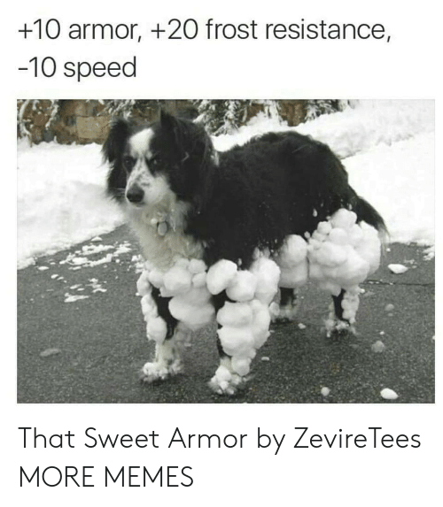 armor: +10 armor, +2O frost resistance,  -10 speed That Sweet Armor by ZevireTees MORE MEMES