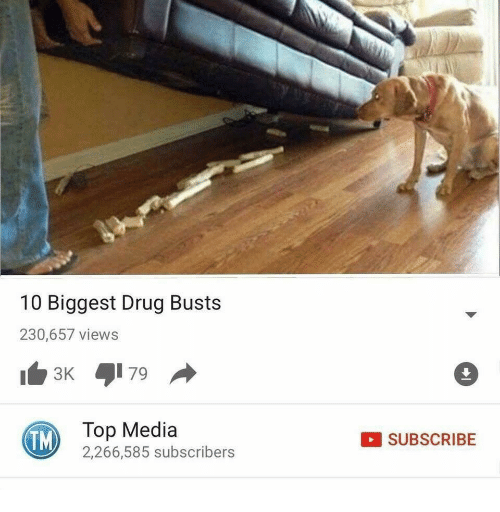 Drug, Media, and Top: 10 Biggest Drug Busts  230,657 views  TM)  Top Media  2,266,585 subscribers  SUBSCRIBE