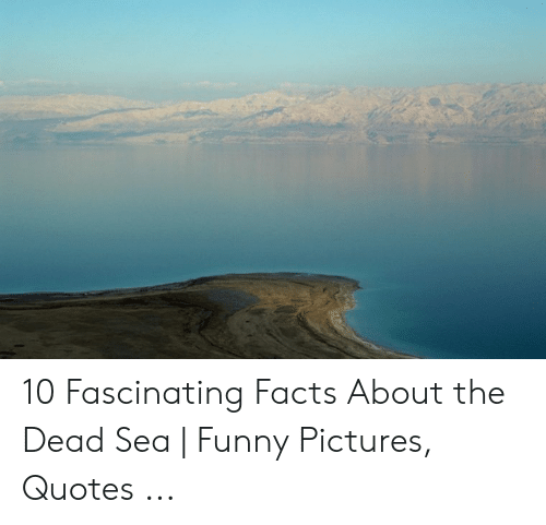 10 Fascinating Facts About The Dead Sea Funny Pictures