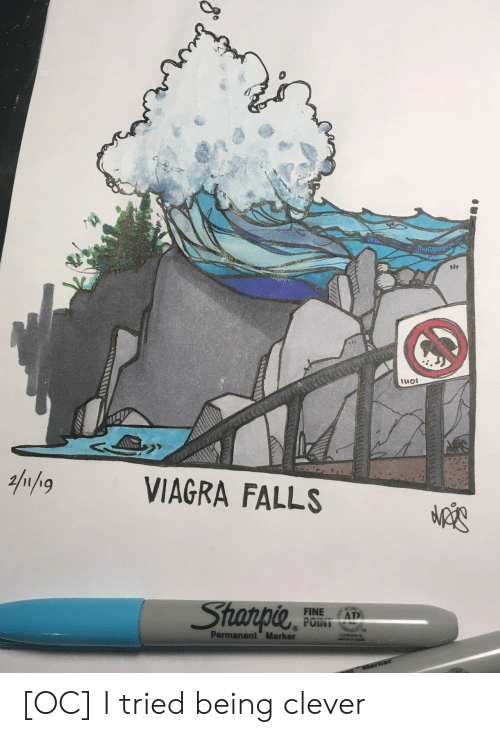 Viagra: 100  11101  VIAGRA FALLS  Star PIL  FINE AT  Permanent Marker [OC] I tried being clever