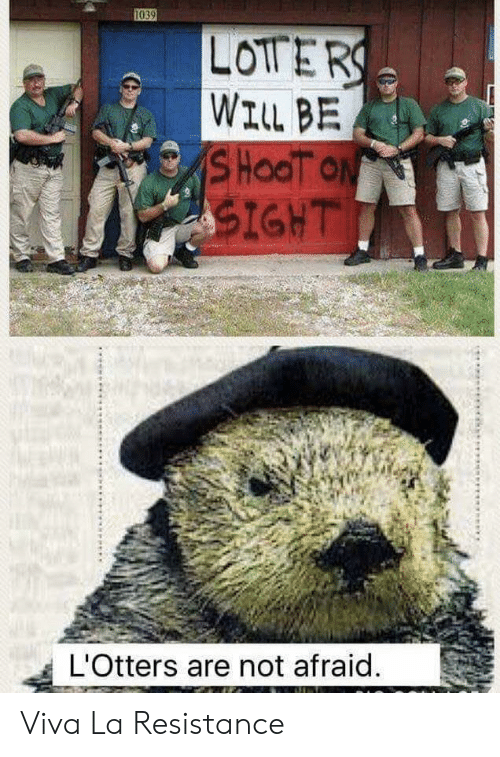 viva: 1039  LOTERS  WILL BE  SHOOT ON  SIGHT  L'Otters are not afraid.  க Viva La Resistance