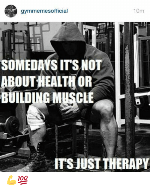 Health, Muscle, and Therapy: 10m  gymmemesofficial  SOMEDAYS ITS NOT  ABOUT HEALTH OR  BUILDING MUSCLE  ITS JUST THERAPY 💪💯