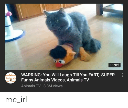 Laugh Till: 11:02  WARRING: You Will Laugh Till You FART, SUPER  Funny Animals Videos, Animals TV  Animals TV · 8.8M views  Animals me_irl