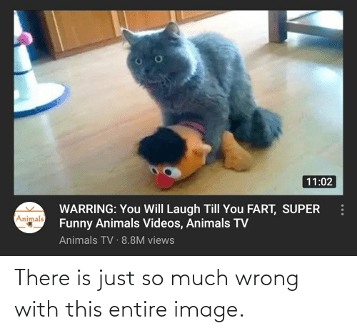 Laugh Till: 11:02  WARRING: You Will Laugh Till You FART, SUPER  Funny Animals Videos, Animals TV  Animals TV · 8.8M views  Animals There is just so much wrong with this entire image.