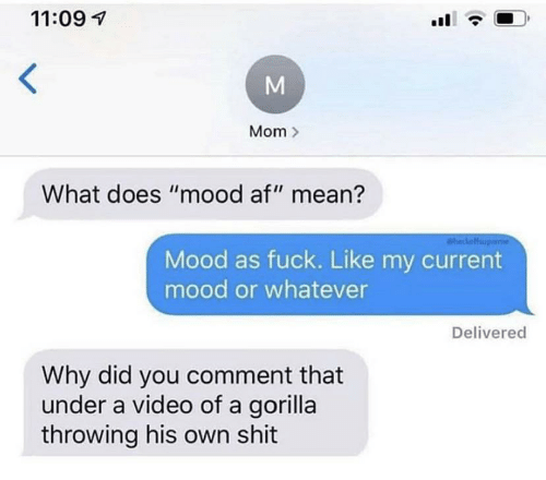 "Af, Mood, and Shit: 11:09  Mom  What does ""mood af"" mean?  aheckoff  Mood as fuck. Like my current  mood or whatever  Delivered  Why did you comment that  under a video of a gorilla  throwing his own shit"