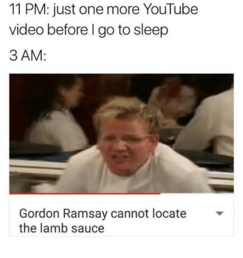 Locate The Lamb Sauce: 11 PM: just one more YouTube  video before l go to sleep  3 AM:  Gordon Ramsay cannot locate  the lamb sauce