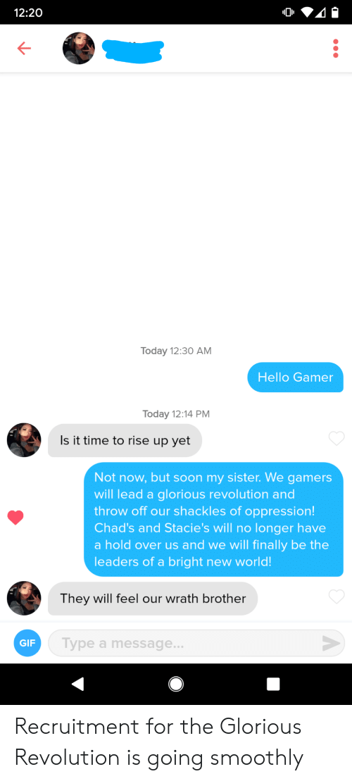 gamers: 12:20  Today 12:30 AM  Hello Gamer  Today 12:14 PM  Is it time to rise up yet  Not now, but soon my sister. We gamers  will lead a glorious revolution and  throw off our shackles of oppression!  Chad's and Stacie's will no longer have  a hold over us and we will finally be the  leaders of a bright new world!  They will feel our wrath brother  Type a message...  GIF  A Recruitment for the Glorious Revolution is going smoothly