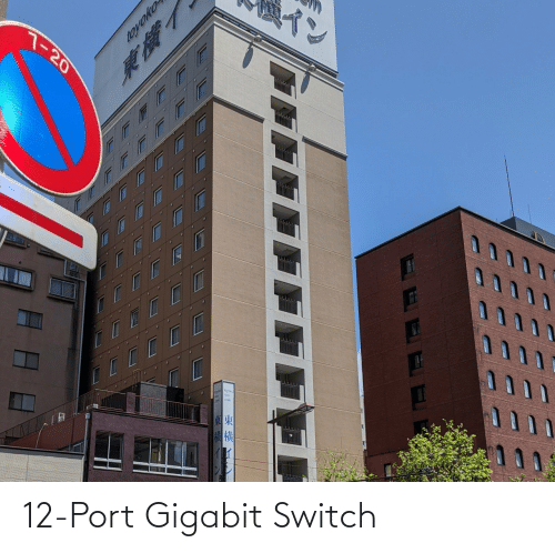switch: 12-Port Gigabit Switch