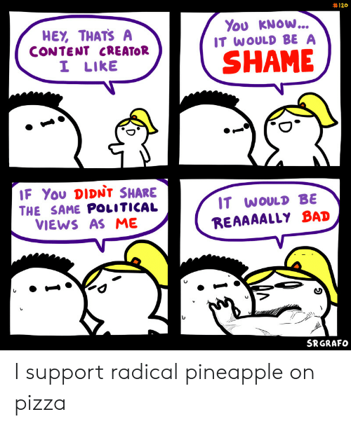 Shame If: 120  You KNOW...  IT WOULD BE A  HEY, THATS A  CONTENT CREATOR  I LIKE  SHAME  IF You DIDNt SHARE  IT WOULD BE  THE SAME POLITICAL  VIEWS AS ME  REAAAALLY BAD  SRGRAFO I support radical pineapple on pizza