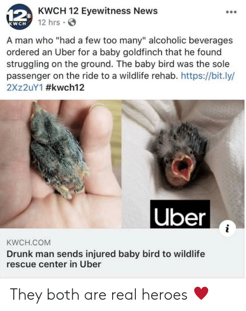 "Drunk, News, and Uber: 12KWCH 12 Eyewitness News  12 hrs  KWCH  A man who ""had a few too many"" alcoholic beverages  ordered an Uber for a baby goldfinch that he found  struggling on the ground. The baby bird was the sole  passenger on the ride to a wildlife rehab. https://bit.ly/  2X 2UY1 #kwch12  