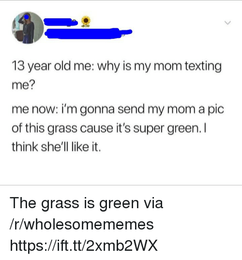 Texting, Old, and Mom: 13 year old me: why is my mom texting  me?  me now: i'm gonna send my mom a pic  of this grass cause it's super green. l  think she'll like it. The grass is green via /r/wholesomememes https://ift.tt/2xmb2WX
