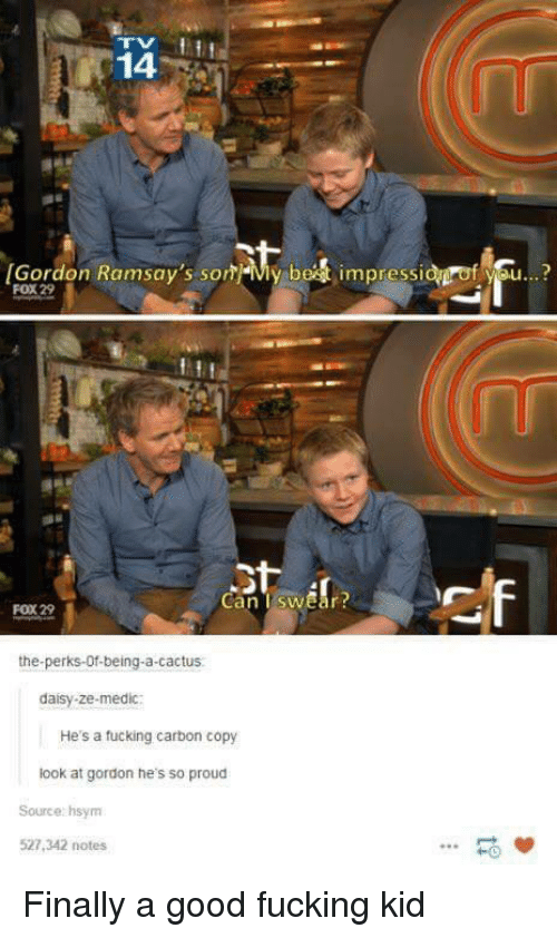 Fucking, Good, and Proud: 14  [Gordon Ramsay's som-My be  impressi  f se..?  FOX 29  Can TswEar  FOX 29  the-perks-Of-being-a-cactus  daisy-ze-medic:  He's a tucking carbon copy  look at gordon he's so proud  Source: hsym  527,342 notes  -0 Finally a good fucking kid