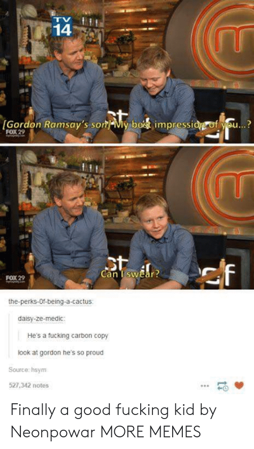 daisy: 14  Gordon Ramsay's sonMy best impressidgrof you...?  FOX 29  Can TswEar  FOX 29  the-perks-Of-being-a-cactus.  daisy-ze-medic  He's a fucking carbon copy  look at gordon he's so proud  Source hsynm  527,342 notes  HO Finally a good fucking kid by Neonpowar MORE MEMES