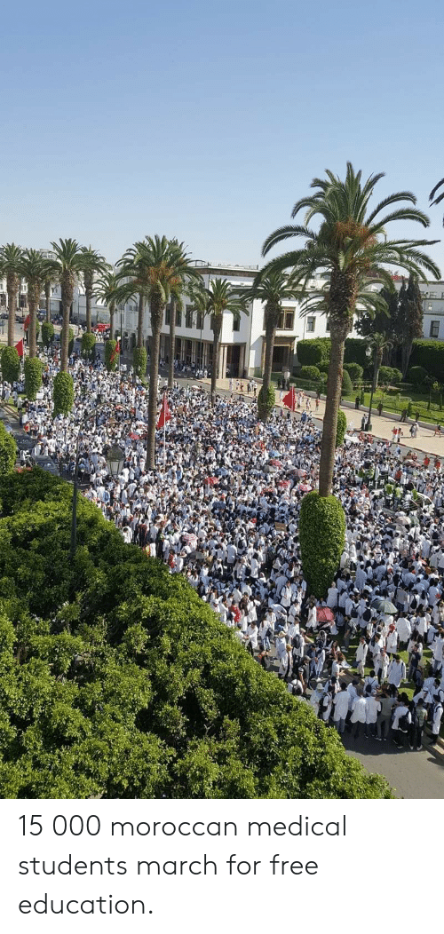 Medical Students: 15 000 moroccan medical students march for free education.